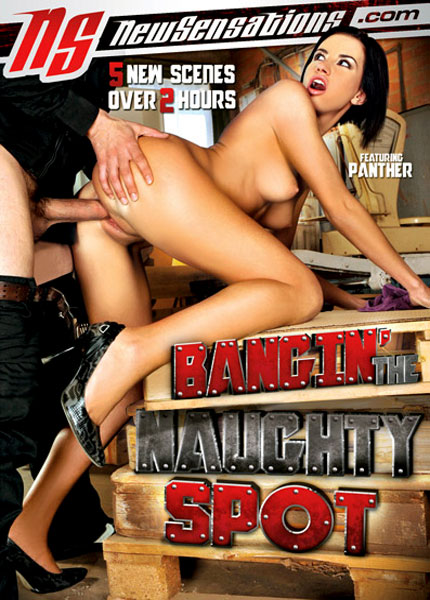 Bangin' The Naughty Spot (2012)