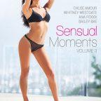 Sensual Moments 3 (2014)